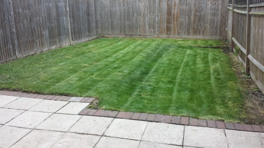 Well maintained lawn.